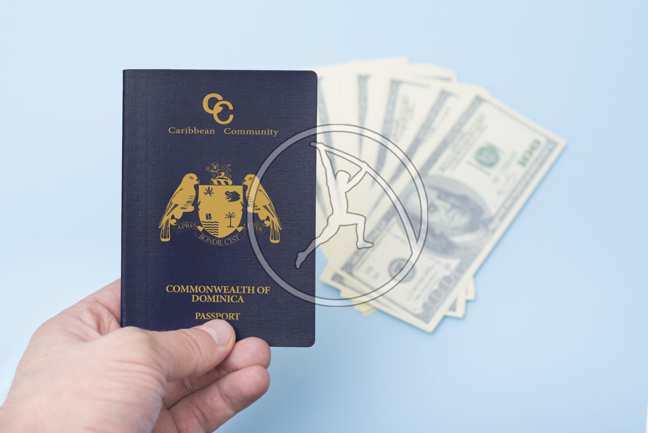 Red empty passport in the man's hand. Dollars. Blue background